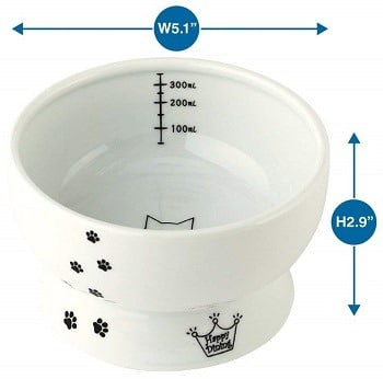 chose best cat water bowl dish for your needs right now