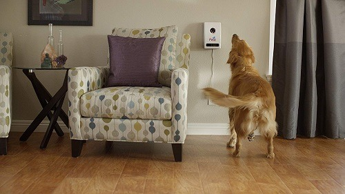 Automatic Wi-Fi Pet Feeder With Camera
