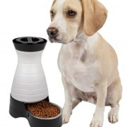 Choose A Metal Automatic Dog Feeder That Your Dog Will Love