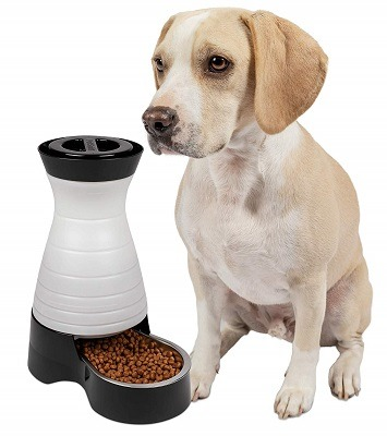 Metal Automatic Dog Feeder review