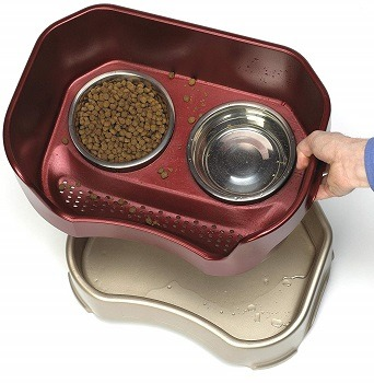 Neater Feeder Deluxe Dog Elevated Feeder review