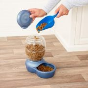 Best 5 Outdoor Automatic Cat Feeders & Food Dispenser Reviews