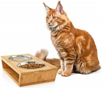Pawfect Pets Premium Elevated Dog and Cat Pet Feeder review