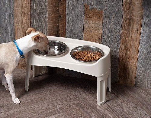 Best Elevated Raised Feeder For Large Dog With Storage Reviews