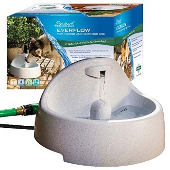 petsafe automatic dog waterer outdoor