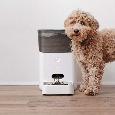 Programmable Dog Feeder with timer
