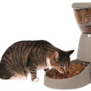 Top 5 Timed Programmable Pet Feeders & Food Dispensers Reviews